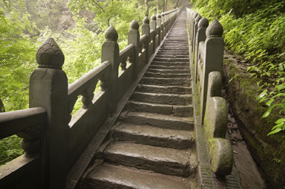 The Path to True Wellness Starts Here!