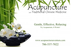 Acupuncture and Traditional Chinese Medicine in Aventura Florida