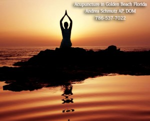 Acupuncture in Golden Beach Florida